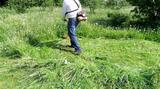 Покос травы на участке